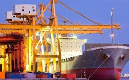 Doanh nghiệp trong khu chế xuất có được quyền nhập khẩu và phân phối?