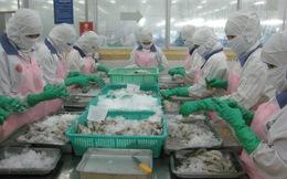 Mỹ giảm 0,02% thuế chống bán phá giá tôm Việt Nam