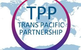 Ba vấn đề cần đặc biệt chú ý trong TPP