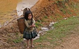 Lao động từ sớm khiến kết quả học tập của trẻ em Việt Nam giảm sút