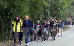 """Du lịch Việt Nam """"gặt vàng"""" ngay từ những ngày đầu năm"""