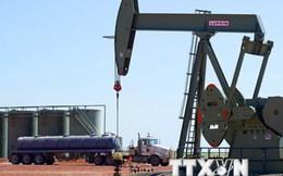 """1.500 tỷ USD đổ vào ngành năng lượng trở thành """"công cốc""""?"""