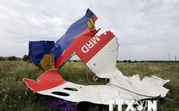 Xuất hiện thông tin điệp viên CIA chỉ đạo vụ bắn rơi MH17