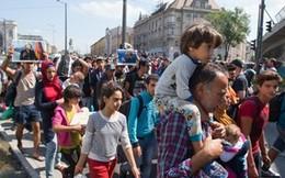 Hungary tuyên bố ngừng hỗ trợ chở người di cư đến biên giới Áo