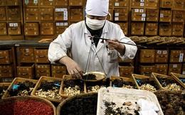 Úc: 90% các loại thuốc Đông Y Trung Quốc có độc tố