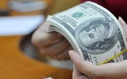 Đâu là nguyên nhân tỷ giá USD/VND tăng kịch trần từ hôm qua?