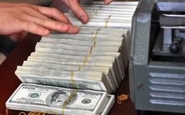 Đề xuất cho ngân sách vay nguồn dự trữ ngoại hối