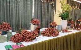 Người Sài Gòn sẽ tiêu thụ 80.00 tấn vải thiều miền Bắc
