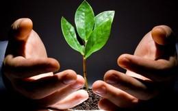 [Khởi nghiệp] Chính phủ sắp lập quỹ đầu tư rất lớn hỗ trợ doanh nghiệp khởi nghiệp