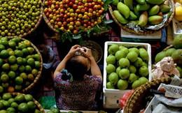 ANZ dự báo gì về kinh tế Việt Nam năm 2016?