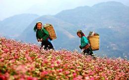Việt Nam nằm trong top 3 tăng trưởng GDP chỉ sau Ấn Độ và Trung Quốc
