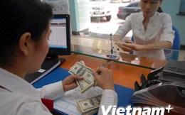 Ngân hàng Nhà nước: Tỷ giá ngoại tệ tăng là do yếu tố tâm lý