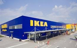 Mở thị trường quốc tế: Bài học từ Ikea