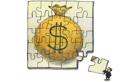 Cho ngân sách vay dự trữ ngoại hối: Dễ tạo thành tiền lệ