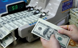Các DNNN còn gần 20 nghìn tỷ đồng đầu tư ngoài ngành sẽ phải thoái vốn trong năm nay