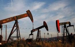 """Mỹ soán ngôi """"nước xuất khẩu dầu mỏ lớn nhất thế giới"""""""