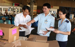 Chính sách thuế, hải quan: Còn lắm nhiêu khê cho DN Việt kiều