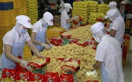 8 tháng, Hàn Quốc dẫn đầu hoạt động đầu tư tại Việt Nam