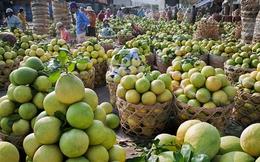 Thị trường trái cây: Đích ngắm 2 tỷ USD