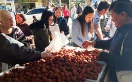 Để trái cây Việt Nam vươn đến các thị trường khó tính