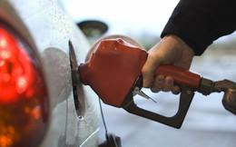 Sẽ mất tới 5 năm để giá dầu phục hồi