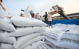 Bức tranh nhập khẩu gạo thế giới sẽ thế nào trong 10 năm tới?