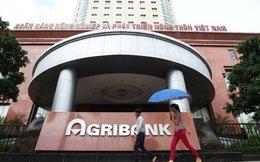 Cho vay sai quy định, Agribank mất 966 tỉ đồng