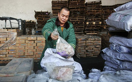 Cận cảnh số thịt đông lạnh 40 năm ở Trung Quốc