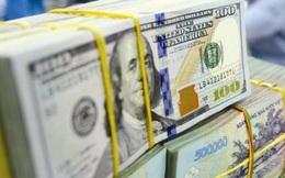 Ngân hàng Nhà nước chặn đà rơi tỷ giá