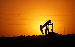 """""""Thế giới sắp thoát cảnh thừa dầu"""""""