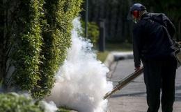 Virus Zika bắt đầu lan rộng tại Đông Nam Á