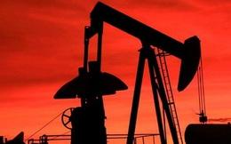 Saudi Arabia-Nga nhất trí giữ cố định sản lượng dầu