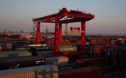 """""""Đại gia"""" vận tải biển sụp đổ, thương mại toàn cầu xáo trộn"""