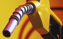 Giá dầu thế giới tăng 40% một tháng