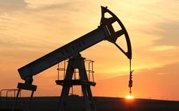 Giá dầu vẫn sẽ hướng xuống mức 10 USD/thùng