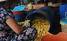 Không chỉ nhuộm măng, chất vàng ô còn được dùng để luộc gà