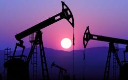 Nhiều nước gặp 'ác mộng' giá dầu