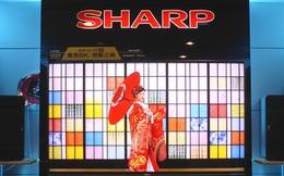 """Tượng đài Sharp của Nhật Bản chính thức """"bán mình"""" cho nhà lắp ráp của Apple với giá 6,2 tỉ USD"""
