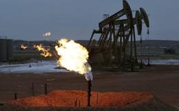 Châu Á không sợ giá dầu giảm
