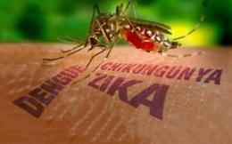 Nữ du khách Hàn Quốc nghi nhiễm vi rút Zika sau khi trở về từ Việt Nam