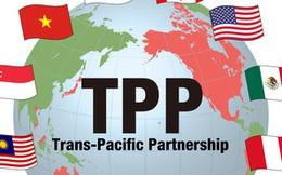 Có hay không có TPP, Việt Nam vẫn tiến về phía trước