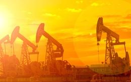 Từng bị hắt hủi suốt năm 2015, dầu mỏ lại đang là kênh sinh lời nhất từ đầu năm nay