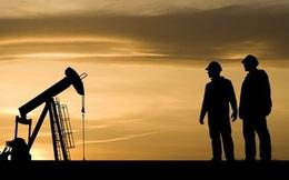 Giá dầu tiến sát mốc 50 USD/thùng