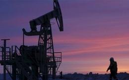 """Iran: Tham gia thỏa thuận đóng băng khai thác dầu mỏ là """"phi lý"""""""