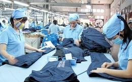 Doanh nghiệp Việt hứng khởi … nửa vời?
