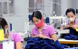DN thích Hiệp định thương mại tự do Việt Nam – EU hơn TPP