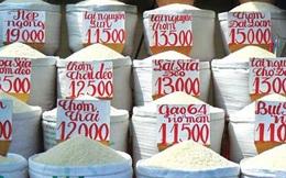 Cùng một tiêu chuẩn gạo, nhưng giá gạo xuất khẩu của Việt Nam lúc nào cũng thấp hơn Thái Lan nhiều