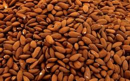Bận tới mức không tha thiết chuyện ăn uống, hãy bổ sung 7 thực phẩm giúp tích trữ năng lượng sau!
