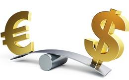 """""""Ngọn núi lửa"""" EU trực phun trào, euro ngày càng lép vế so với USD"""