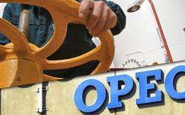Doanh thu dầu mỏ của OPEC thấp nhất trong 10 năm qua